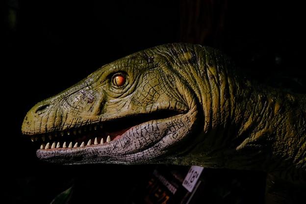 2017.07.27 みなとみらい ヨコハマ恐竜展 2