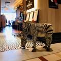 写真: 2017.11.21 丸の内ビルディング MAISON BARSAC Zebra