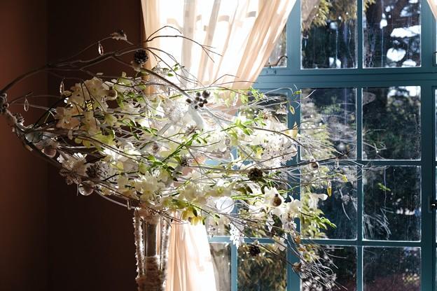 2017.12.12 山手西洋館 ベーリック・ホール 世界のクリスマス オランダ サンルームのツリー