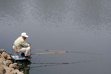 2011.05.01 和泉川 箆鮒遊びの指定席