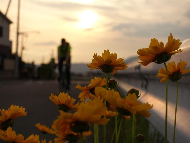 夕陽に照らされる君を撮りたかった