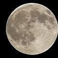 a・a----moonさまのクレータ