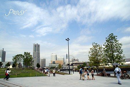 夏の休日・・ 大きな空が見える公園