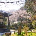 写真: 鎌倉-310