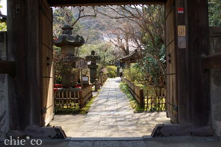 鎌倉-327