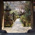 写真: 鎌倉-327