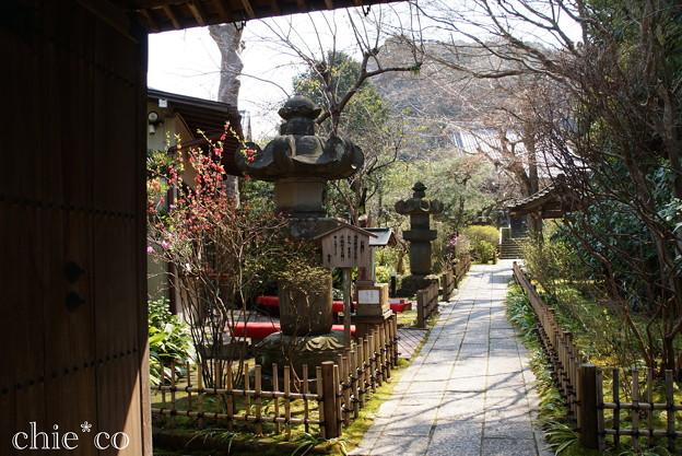 鎌倉-338