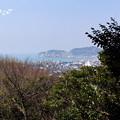 写真: 鎌倉-349
