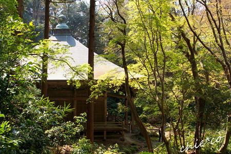 鎌倉-355