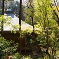 写真: 鎌倉-355