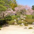 写真: 北鎌倉-398