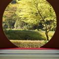 写真: 北鎌倉-416