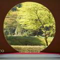 写真: 北鎌倉-417