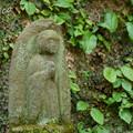 写真: 北鎌倉-458