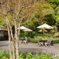 写真: 鎌倉-262