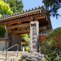 写真: 鎌倉-298
