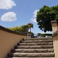 写真: イタリア山庭園-162