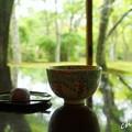 写真: 箱根美術館-170
