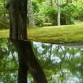 写真: 箱根美術館-172