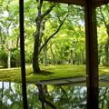 写真: 箱根美術館-175
