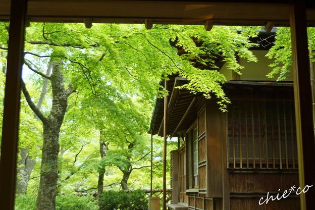 箱根美術館-177