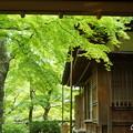 写真: 箱根美術館-177