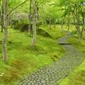 写真: 箱根美術館-180