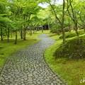写真: 箱根美術館-182