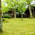 写真: 箱根美術館-207