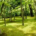 写真: 箱根美術館-210