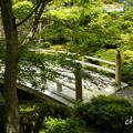 写真: 箱根美術館-216
