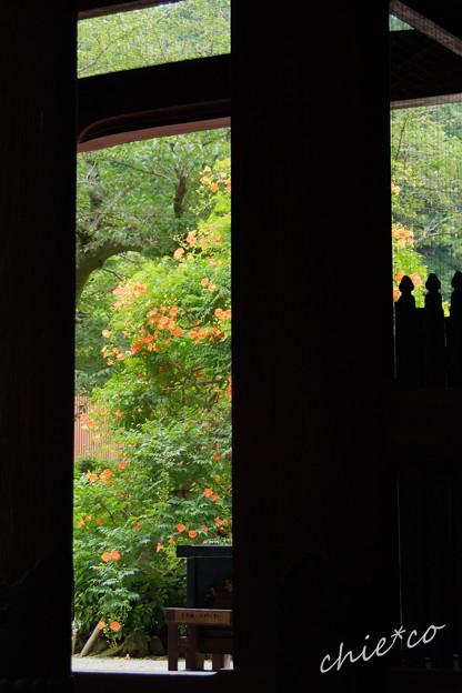 写真: 鎌倉-135