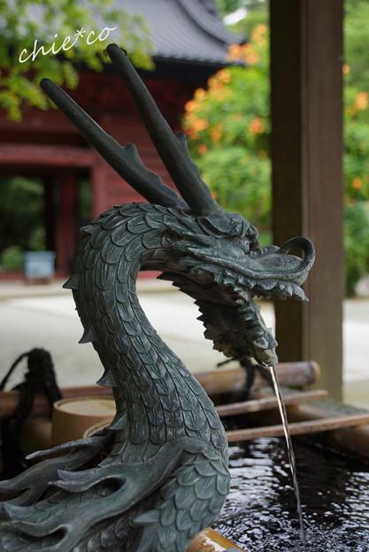 写真: 鎌倉-137