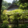 写真: 鎌倉-150