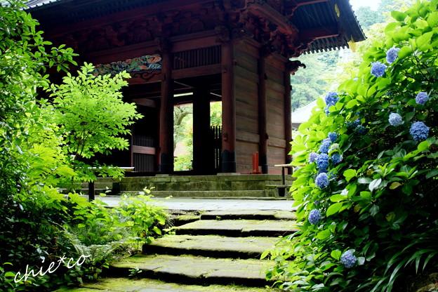 鎌倉-163