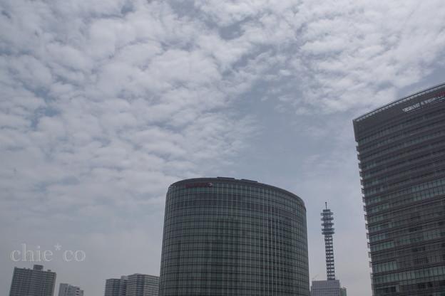 Yokohama-072