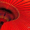 写真: 野点傘。。