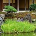 写真: 鎌倉-551