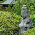 写真: 鎌倉-552