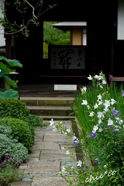 鎌倉-555
