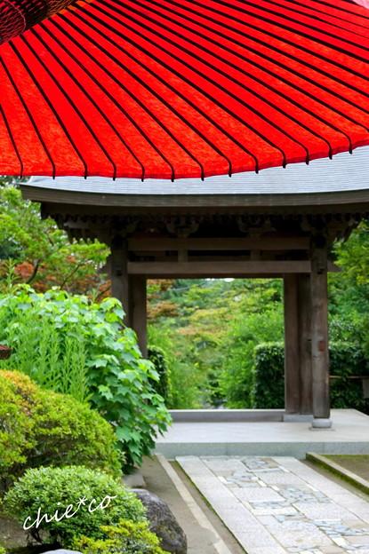 写真: 鎌倉-516