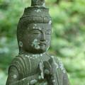 写真: 鎌倉-589