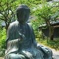 写真: 鎌倉-591