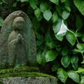 写真: 鎌倉-595