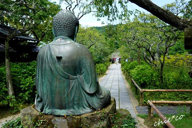 写真: 鎌倉-599