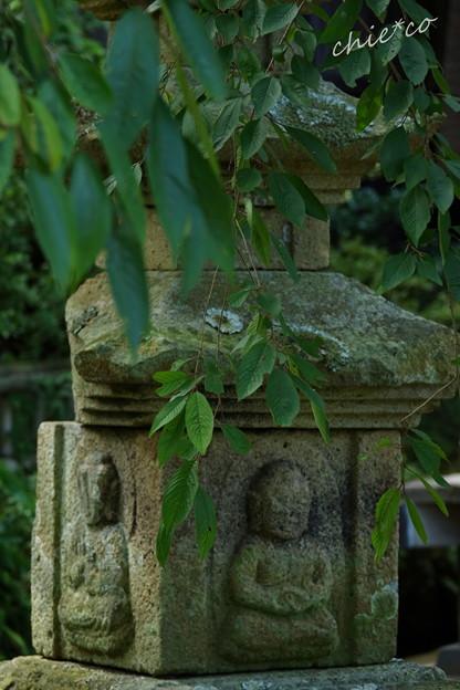 写真: 鎌倉-603