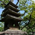 写真: 鎌倉-604
