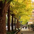 写真: Yokohama-200