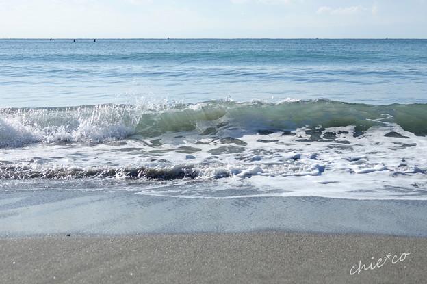 逗子海岸-022