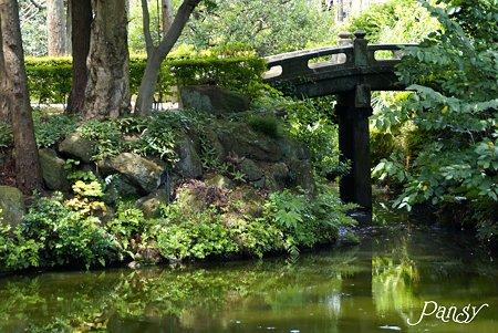 石橋のかかる池・・